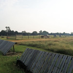 Cross Country Field