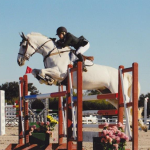 mandy Show Jumping
